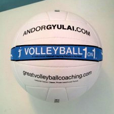 Free_Volleyball_1